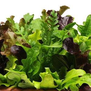Lechuga Simplysalad Alfresco Mix